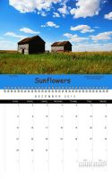 Manitoba Canada Calendar December by Joe-Lynn-Design