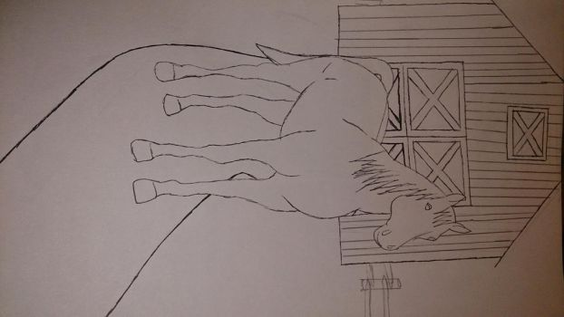 My attempt at a drawing of a Horse by Nativewolf16