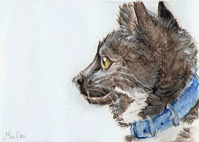 Safi ACEO by Muflee