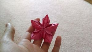 Origami - 5 Petal Flower [1] by ShittyChan