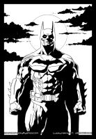 Batman Arkham 28 Dec 2010 by veryveryluckyman