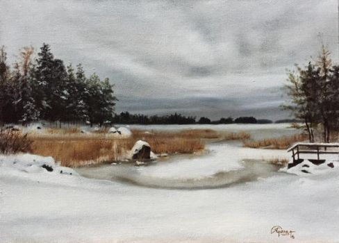 A Lake in Finland in Winter, 2 by RBGuerra