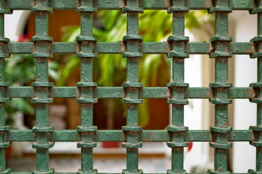 Gate Detail by rcongreve