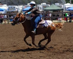 361- Anoka county 4-h horse show by ponygirl0316
