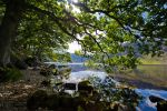 Down by the shores of Crummock by nicky