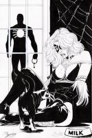 spider man and black cat by amorimcomicart
