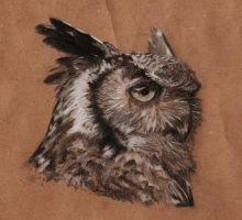 Owl portrait by Sherlockian