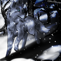 Wolf in the snow by XBlackIce