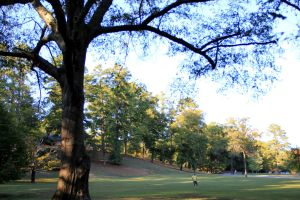 Berry College Campus (2010) by Wigglesx