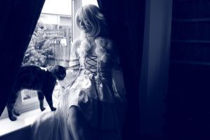 Abyss Alice and her cat cheisha by chihirophotograper