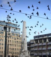 Flight at Dam Square by cplcrud