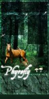Palomino Woods by Authy