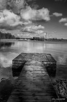 Spring day In Stockholm BW by olideb08
