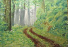Fog in the forest by Scientist-2002-1