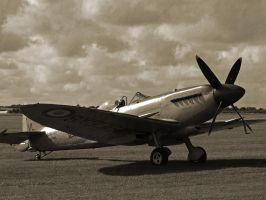 Supermarine Seafire by davepphotographer