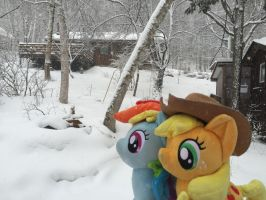 Applejack  RainbowDash watching snow by Setorin5