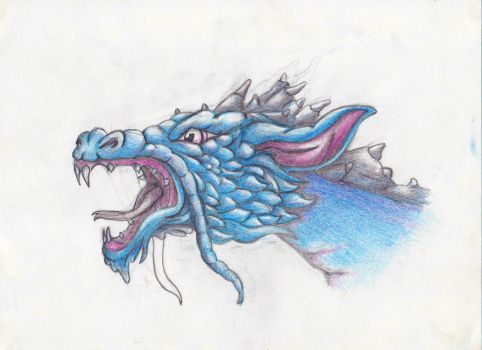 The Dragon by hystericalpears