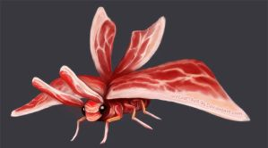 BACON MOTH by WeLostTheRibs