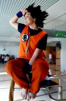 Goku Cosplay-Looking for by Chichicken