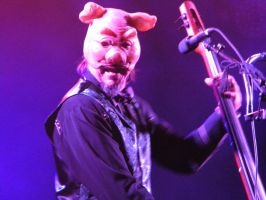 Les Claypool At Coachella 2 by Johnny-Lively