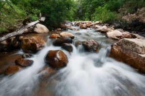 Down the river by prperold