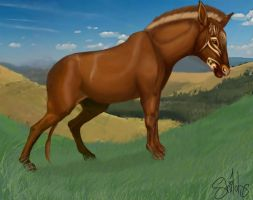 Hypohippus by shilohs