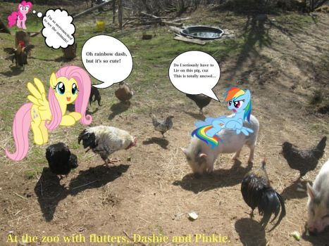 Fluttershy and friends at the petting zoo by Ponyfriendsforever44