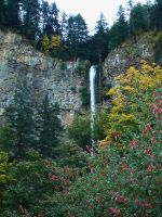 Multnomah Falls in Fall by ardunt