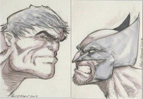 Hulk vs Wolverine Sketch Card!! by MikeVanOrden