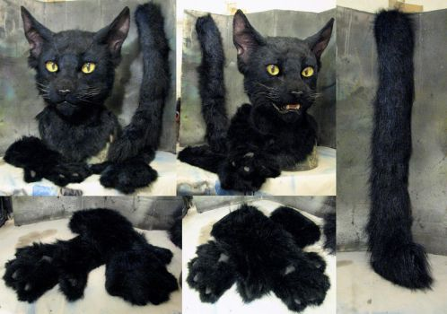 Black cat 2016 partial pics by Crystumes