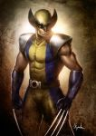 wolverine by Froitz