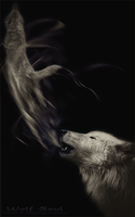 .:Wolf Soul:. by WhiteSpiritWolf