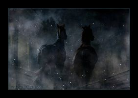 The Night Equine by Rickbw1