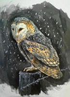 Owl painting by FlobbyBobby