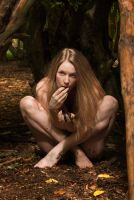 In a forest deep and dark... by Muse1908