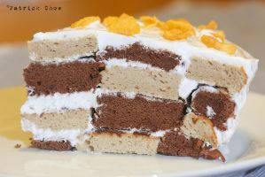 Chequered cake 2 by patchow