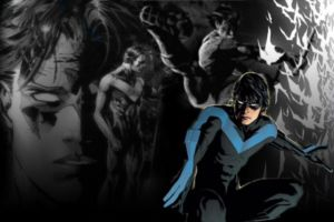 Nightwing Wallpaper by coramay