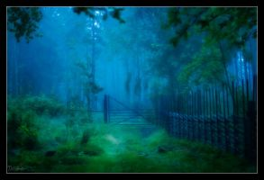 Gates to the forest by DreamSand