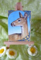Whitetail doe ACEO by Schiraki