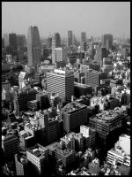 Tokyo by nickthefeet
