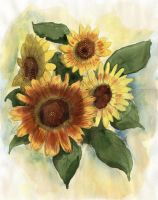 Sunflowers by doma22