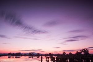 Purple sunset by DominikaAniola