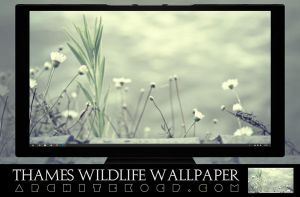 Thames Wildlife Wallpaper Pack by ArchitekOGP