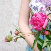 peony blossoms by libelle