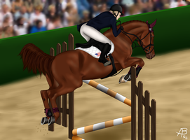 Eddie- OVEC Show Jumping by LittleCreekStables