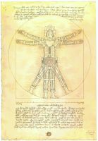 VITRUVIAN  CYBERMAN  (after Leonardo) by Herbarianband