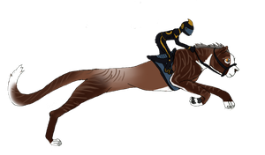 Lnd Sabra 1533 Racing Training by Forget-Me-Not-Fields