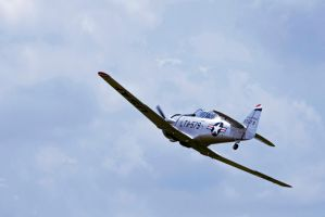 T-6 by LTR91
