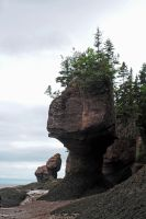 Hopewell Rocks 5 by LucieG-Stock