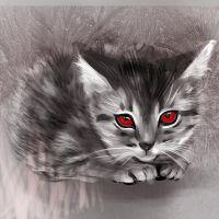 Evil Kitty by Kamilytia